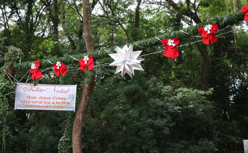 Catedral de Londrina decora o bosque para o Natal